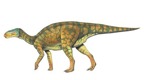 2017年仿真恐龙制作恐爪龙_仿真恐龙动物制作工厂