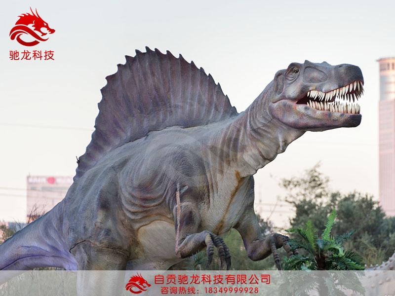 自贡除了悠久历史井盐遗址外,侏罗纪恐龙化石遗迹更是世界闻名,因此自贡也是集中制作仿真恐龙的基地。 日前,记者参观了一家自贡的仿真恐龙公司,全球著名的恐龙均产自此仿真恐龙公司。其中,最贵的一条40米长的霸王龙,卖了16万美金,但很遗憾的是不久便出现安全事故,整个恐龙烧毁,不得不让仿真恐龙业界重视产品安全。